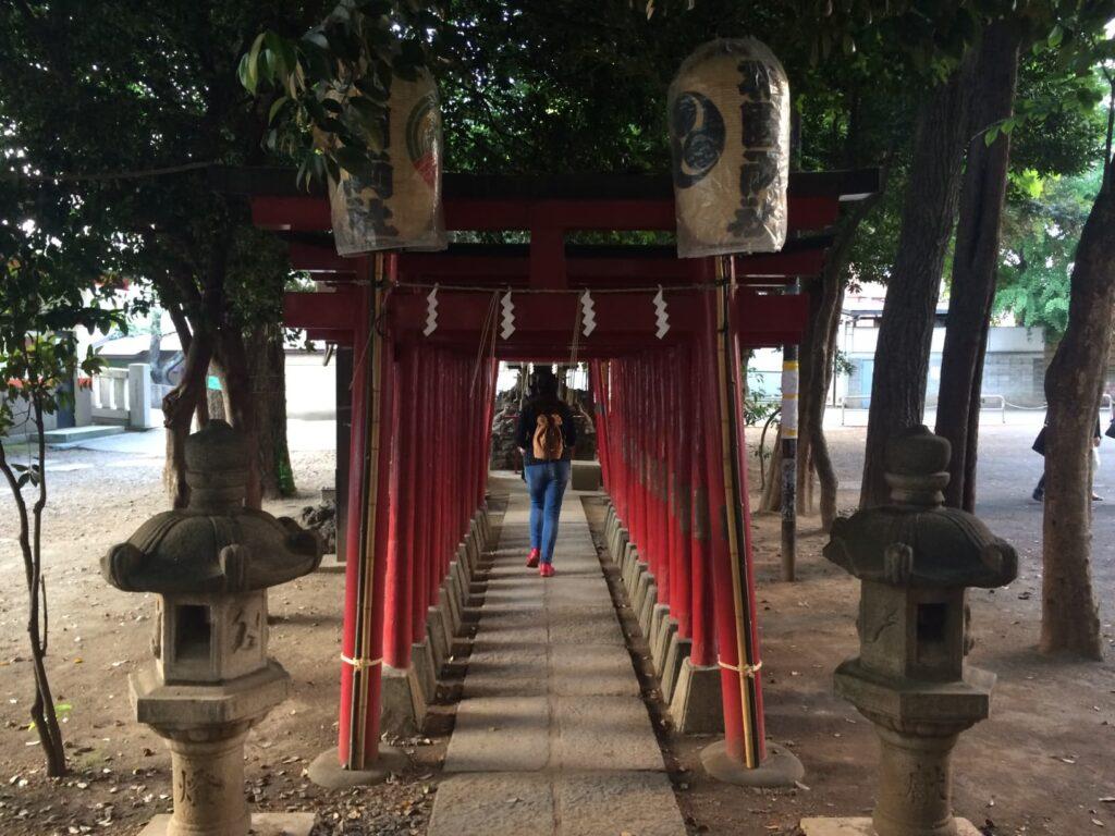 Chiara cammina nel santuario Hanazono di Shinjuku