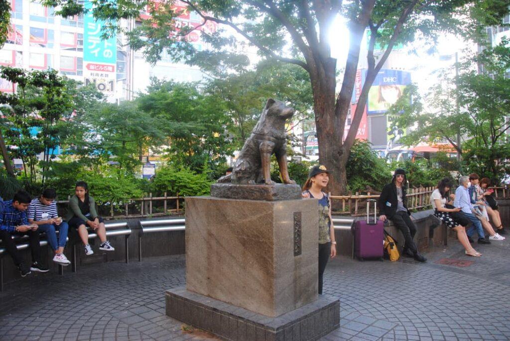Statua di Hachiko a Tokyo